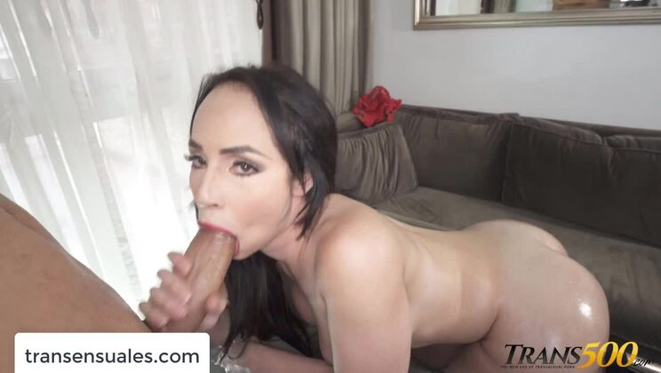 Honey latina transsexual Sherlyn Star is blowing a cock