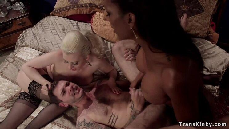 Seducing transsexual Natassia Dream gets anal bang