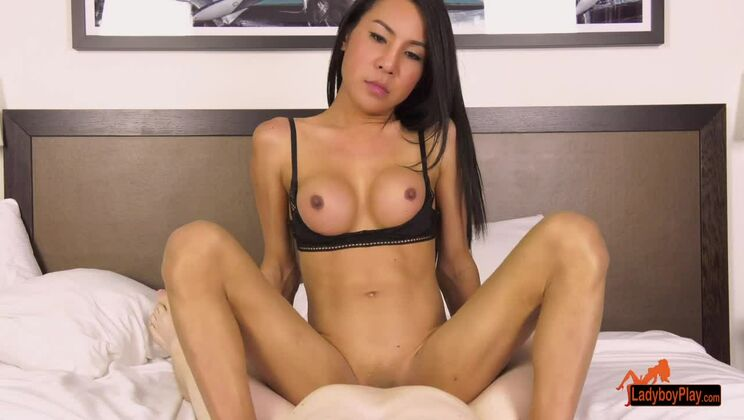 Spicy oriental TS Thippy is sucking my cock