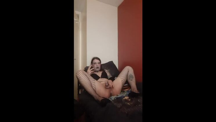 Admirable shemale slut in sexy lingerie